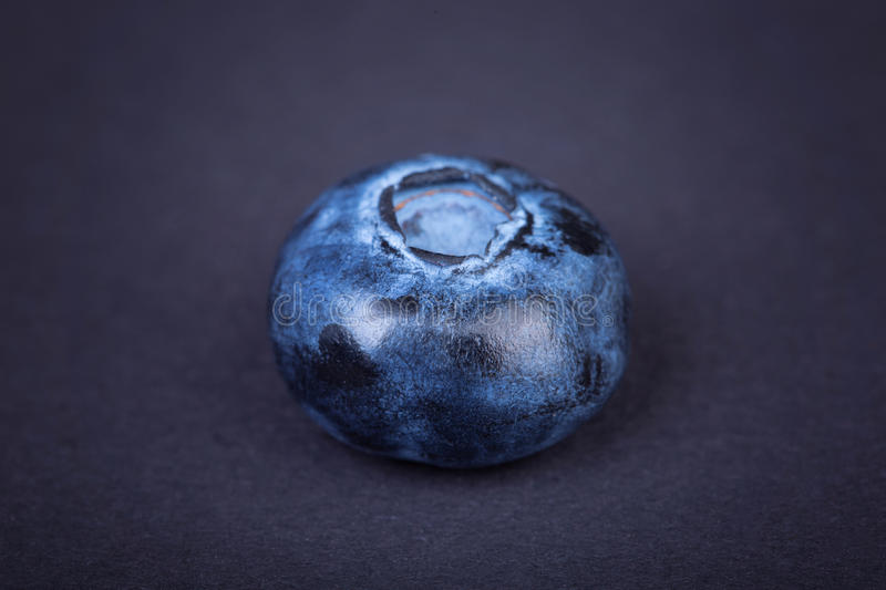 Top view of a juicy, healthful and tasty blueberry on a dark background. Fresh single blueberry fruit, close-up. Summer fruits. Close-up of a big, fresh and royalty free stock image