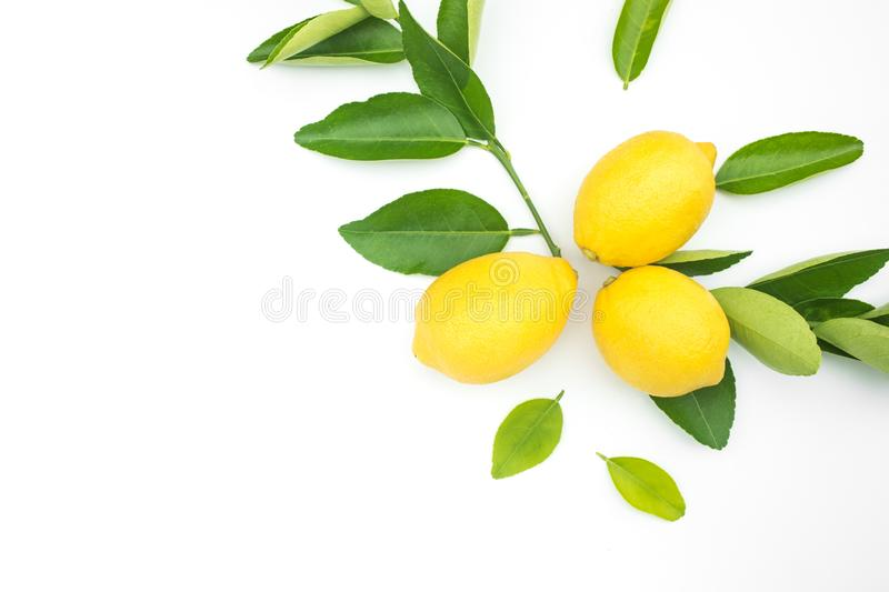 Top view of lemon and leaves on white color background.concepts. Ideas of fruit,vegetable.healthy eating lifestyle royalty free stock photos