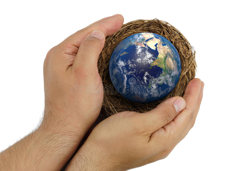 Top view male hands holding nest with Earth inside isolated stock photos
