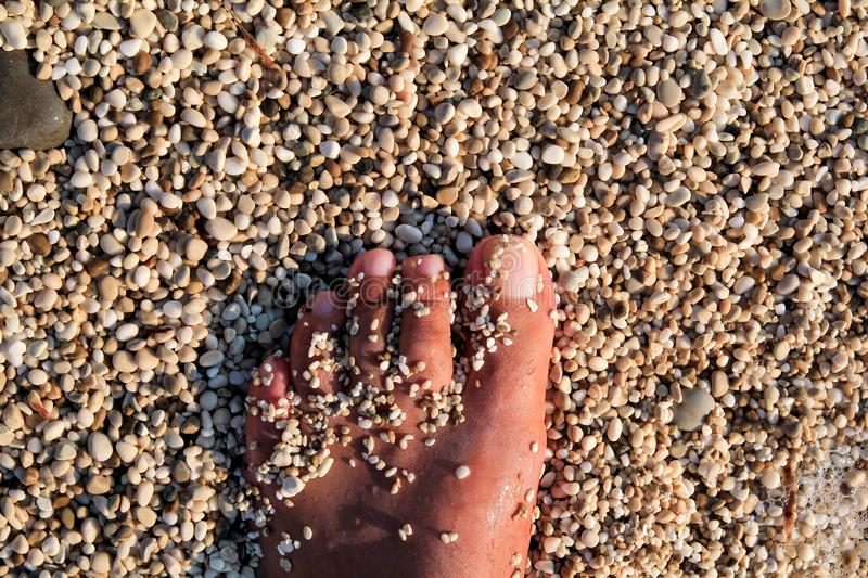 Top view of man standing bare feet on beach. Texture of bottom, leg and foot of man drowning with sweeping stone below on in sea. royalty free stock photos