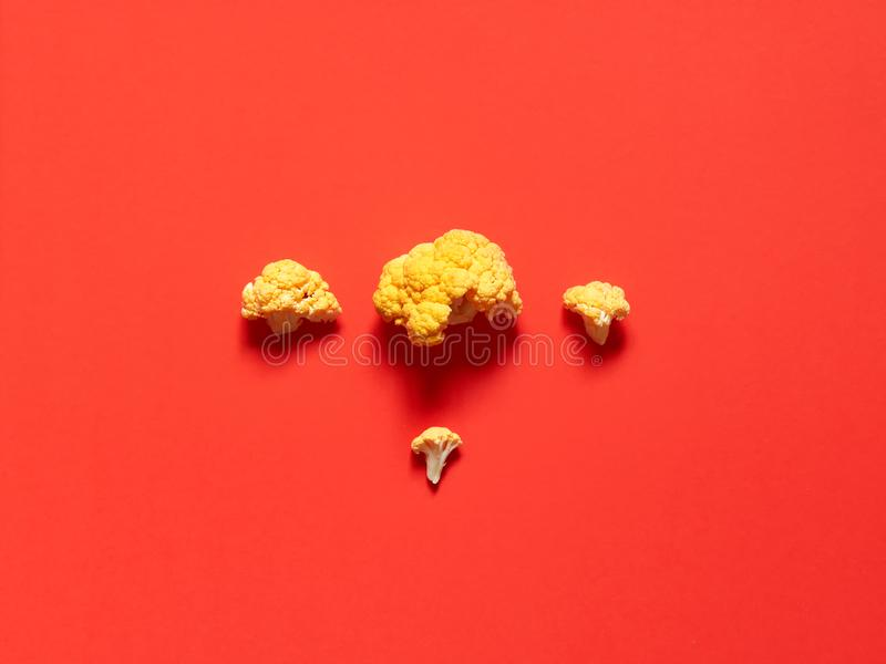 Top view of a minimalistic yellow cauliflower over a pastel red background royalty free stock photo