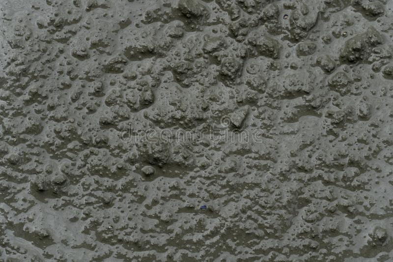 Top view of Mixed cement prepared for use. Background and textured of top view of Mixed cement prepared for use royalty free stock photography