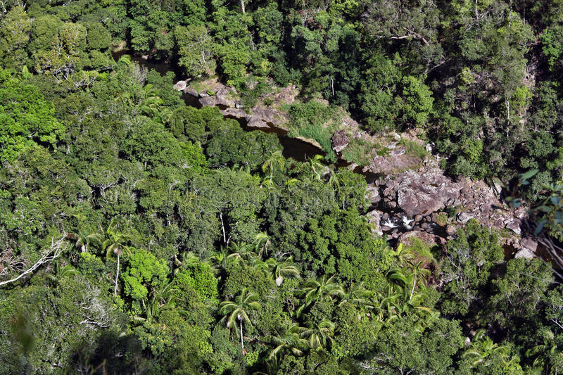 Top view of a mountain river in the bush in Kondalilla National Park. Near Montville, Sunshine Coast, Queensland stock photos