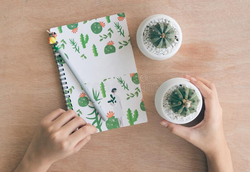 Top view of a Notebook Study and care cactus. On wood table in cactus cultivation house, Cactus nursery stock photo