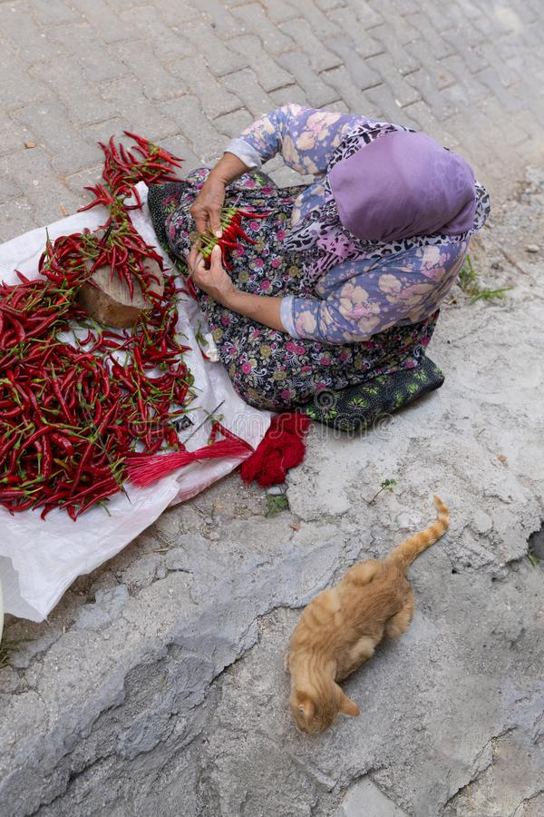Free Top View Of An Old Woman Array And Arrange Long Red Pepper To Hang And Dry. Sewing Needle And Thread Is Required For Hanging Stock Photos - 162417923