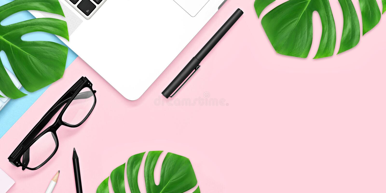 Top view, office table desk with copy space. Workspace frame with green tropical leaf and tea cup on blue pink background royalty free stock images