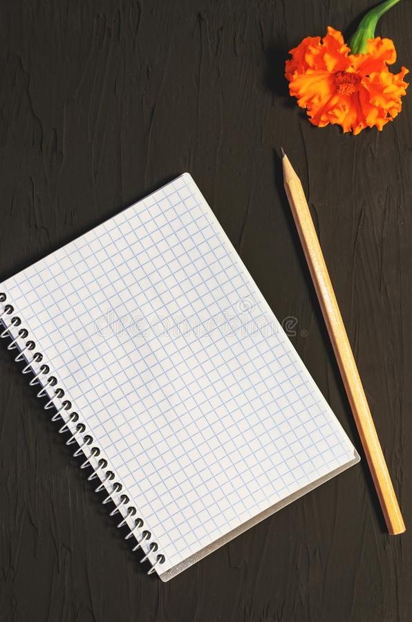 Top view of open spiral blank notebook, wood pencil and an orange marigold flower on a black background. Copy space royalty free stock photography