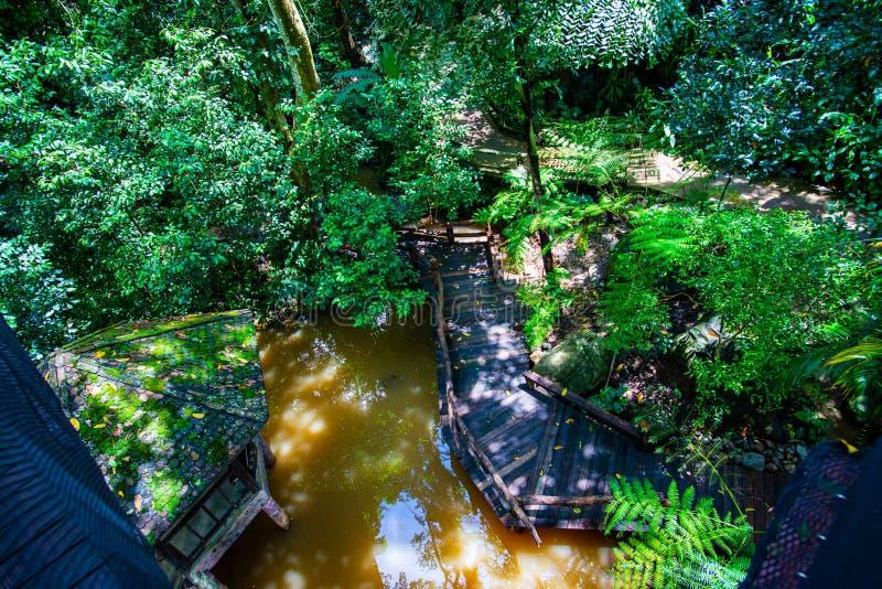 Top View Garden Pathway Stock Images Download 952