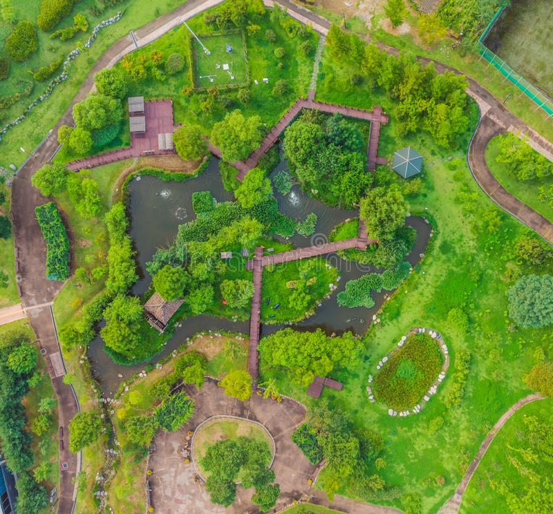 Top view of the park with paths top view.  stock photos