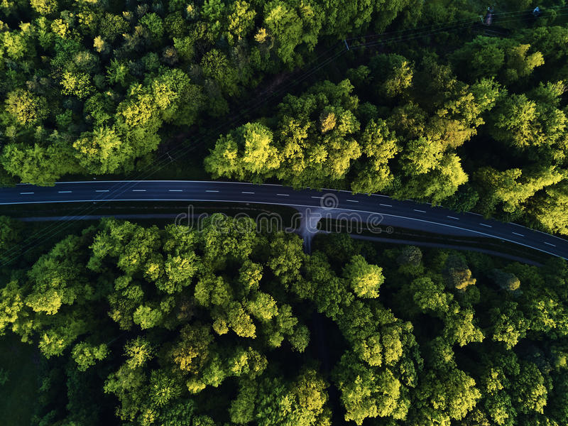 Top view of the path through the trees. View from balloon. Road view from above taken by quadrocopter royalty free stock photos