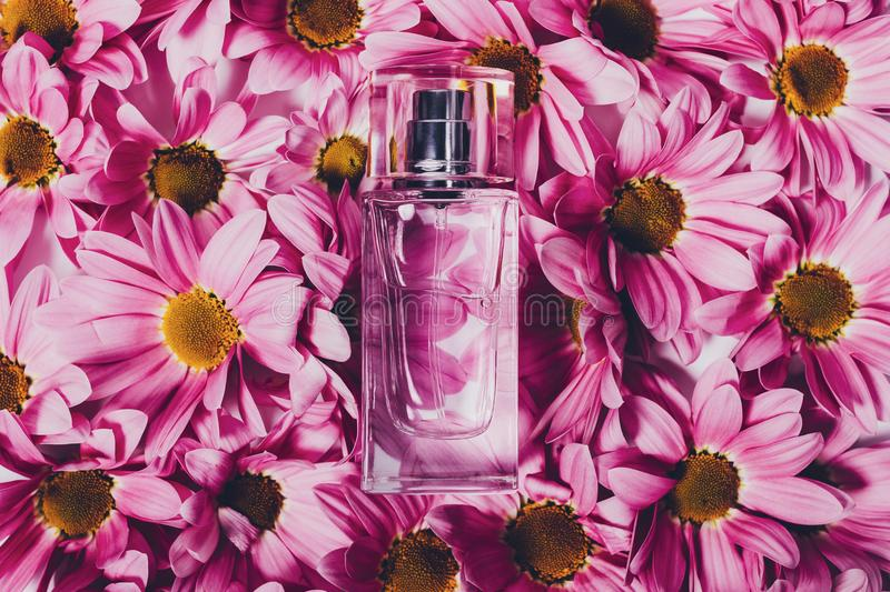 Top view of perfume bottle laying on flowers stock photos