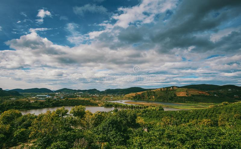 Top View Photography of Green Forest royalty free stock images