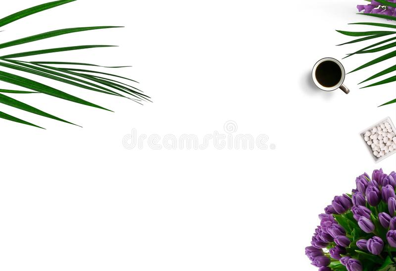 Top-view Photography of White Ceramic Mug On White Background stock photos