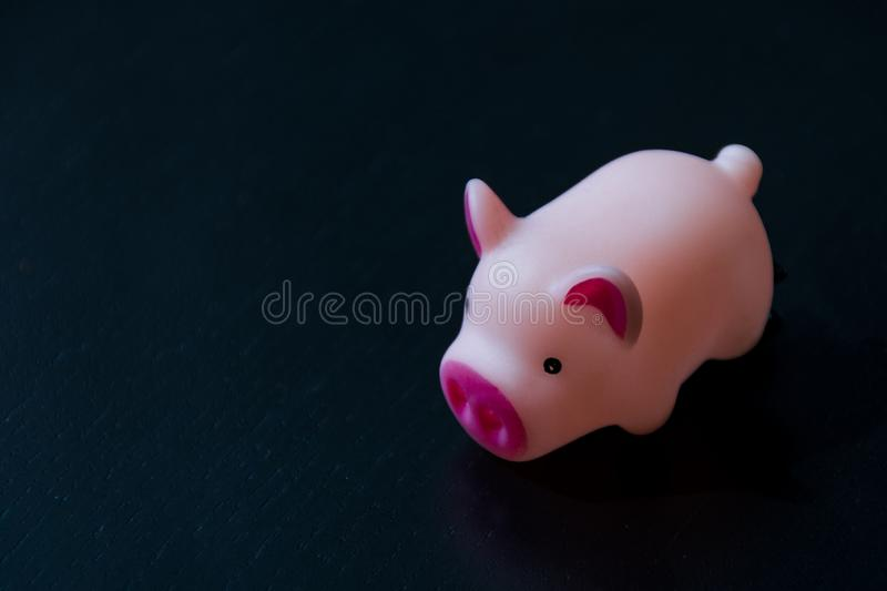 Top view of pig pink color isolated on Black wood floor background stock photography