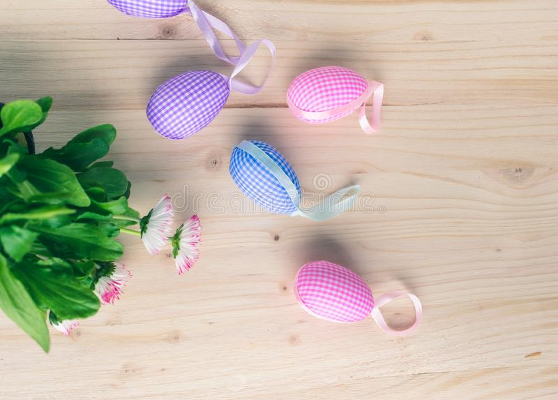 Top view of pink and blue checkered Easter eggs decorations and white and pink daisies on pale wooden background stock photography