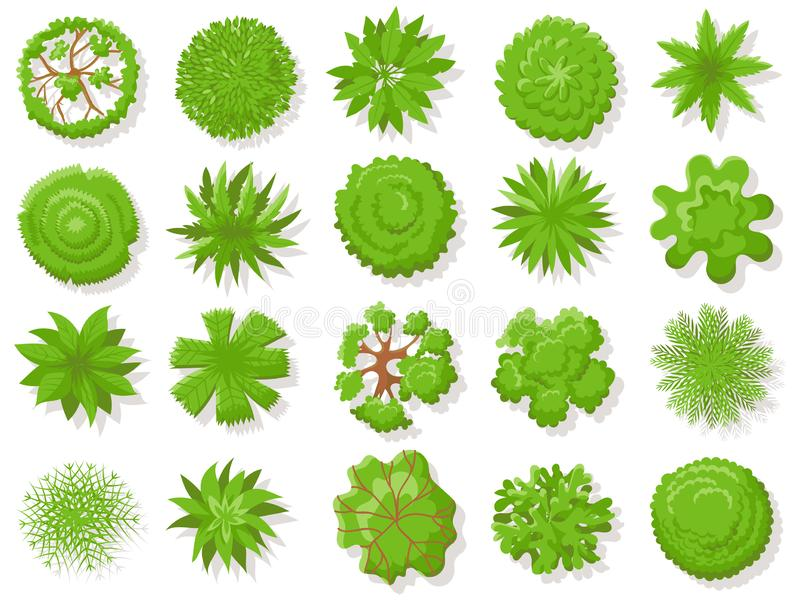 Top view plants. Tropical trees, green plant tree from above for aerial map isolated vector collection. Top view plants. Tropical trees, green plant tree from royalty free illustration