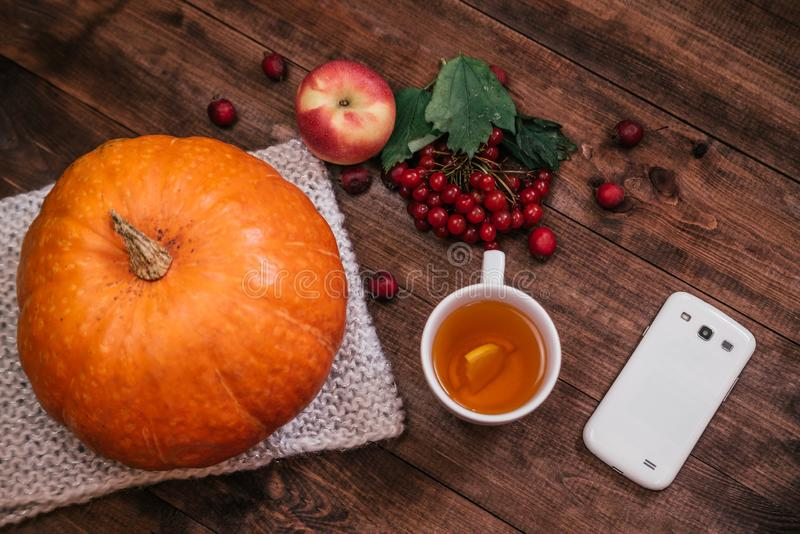 Top view of a pumpkin, apples and a book, phone on wooden table stock photos