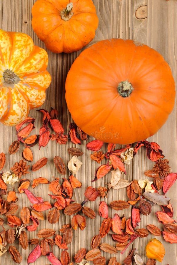Top view of pumpkins