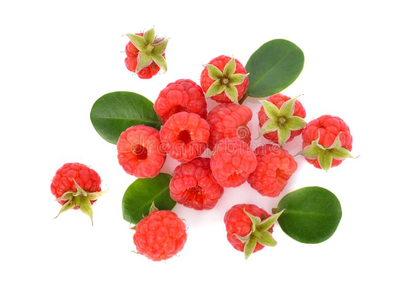 Top view of Raspberries with green leaf isolated on white background stock image