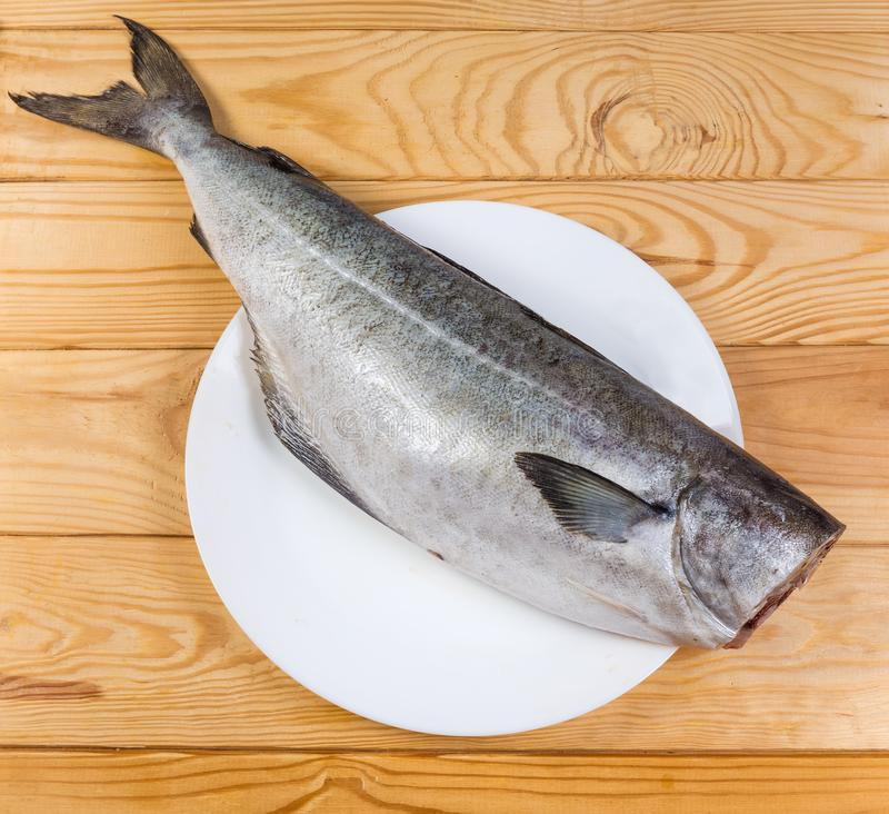 Top view of raw saithe without head, cleaned from scales. Raw carcass of saithe, also known as coalfish without head, cleaned from scales on dish on the rustic royalty free stock photo