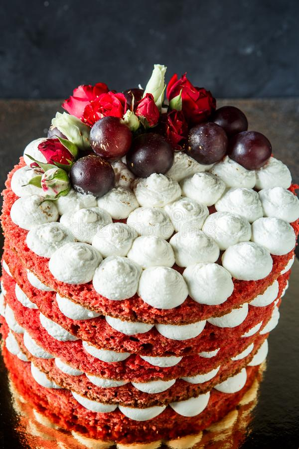 Top view of red sponge and bizet layers of decorated cake. Top view of numerous red sponge and white bizet layers of colorful cake decorated with bizet, grapes stock photography