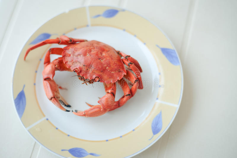 Top view of red tasty boiled crab on plate background, delicious seafood, stock image
