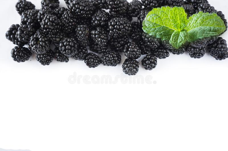 Top view. Ripe blackberries with a mint leaf on white background. Berries at border of image with copy space for text. Background blackberries stock photo