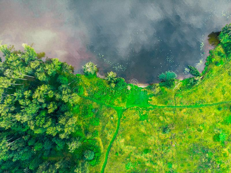 Top view of the river bank, green forest and field royalty free stock photography