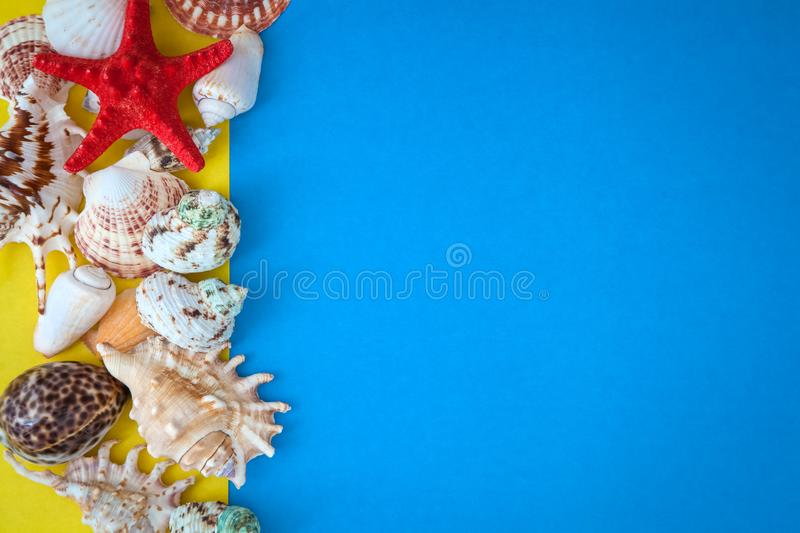 Top view sea shells and starfish. Top view sea shells frame and starfish round empty blue board stock photo