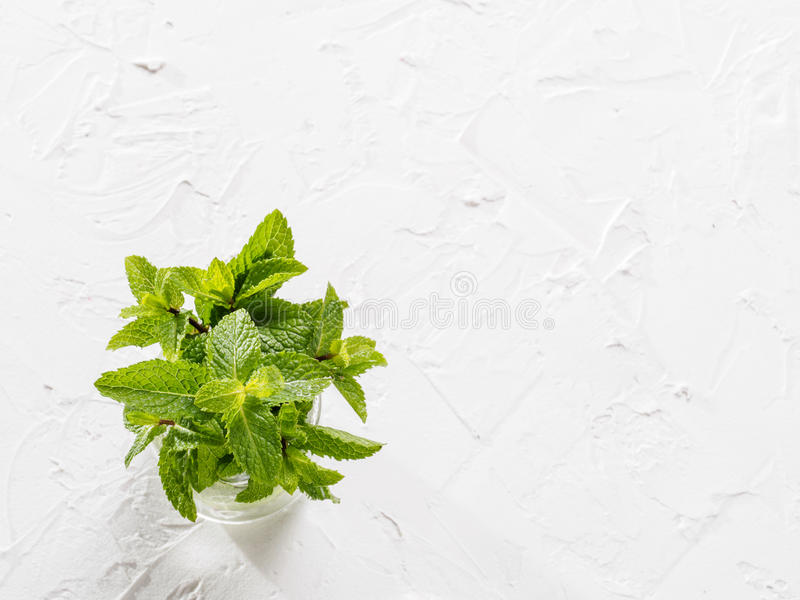 Top view sheaf of fresh mint leaf on white background. Sheaf of fresh mint leaf on gray concrete background. Top view or flat lay. Copy space stock photo