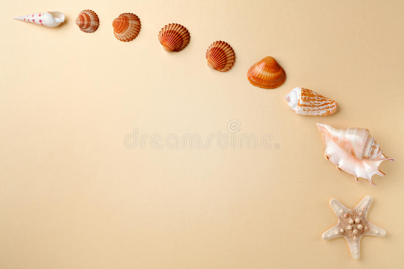 Top view of shells on yellow table. Travel vacation concept. Dreaming about vacation on a tropical beach. Concept decoration tropi royalty free stock images