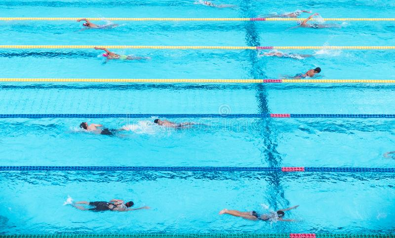 Top view shot of sportsmans in a swimming pool. Top view shot of people swimming freestyle in a race royalty free stock images