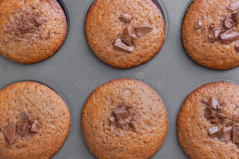 Top view of six freshly baked muffins stock images