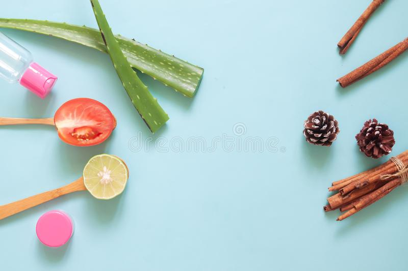 Top view skincare natural ingredients on pastel background, Beauty concept royalty free stock image