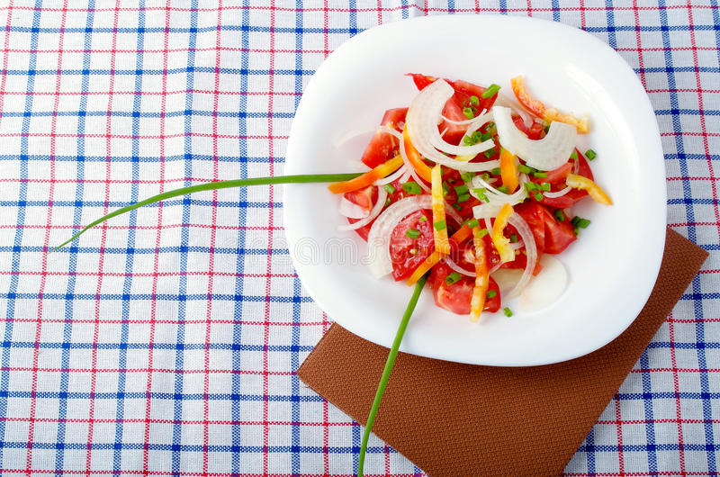Top view of a small portion of vegetarian salad from fresh tomatoes stock photo