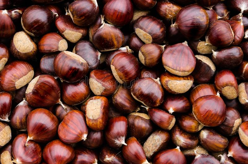 Top view of some chestnuts. stock photos