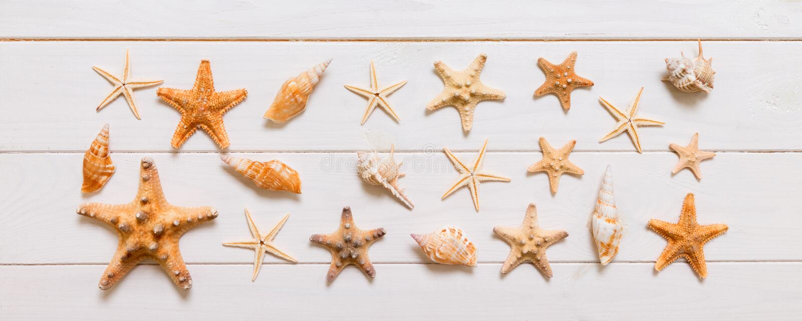 Top view of starfish and many seashells on white wood texture background top view. Copy space background, summer concept royalty free stock image