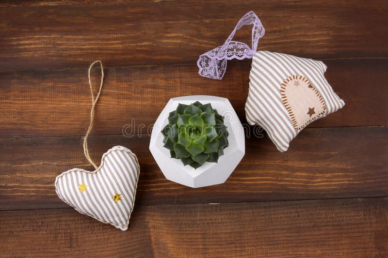 Succulent in a concrete pot , stuffed toys. Top view succulent in a concrete pot , stuffed toys in a form of heart and a house on wooden background stock image