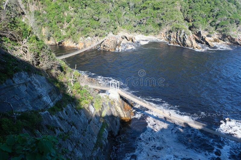 TsiTsiKamma suspension bridges. Top view of the suspension bridges in TsiTsiKamma national park in south africa royalty free stock images