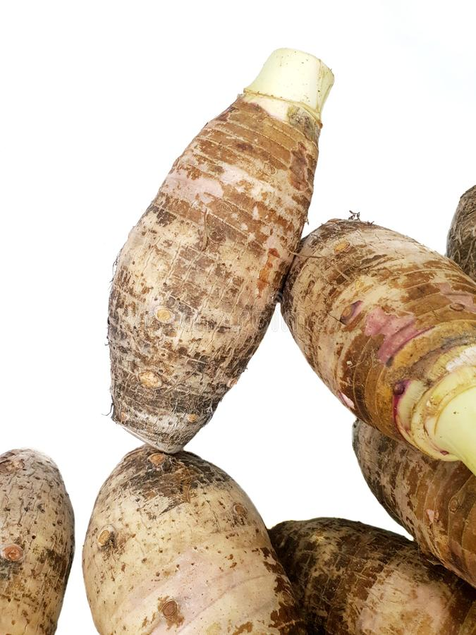 Top view of sweet taro root  isolated on white background royalty free stock images