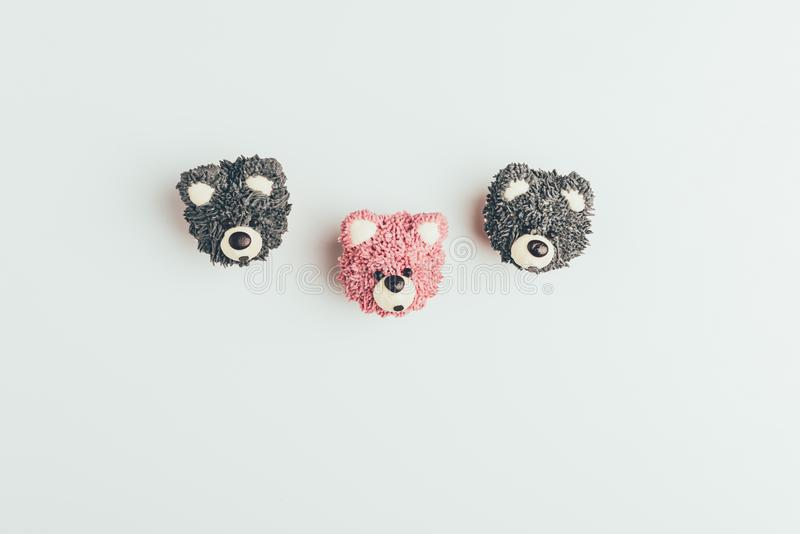 Top view of sweet tasty cakes in shape of bears. Isolated on grey stock photos