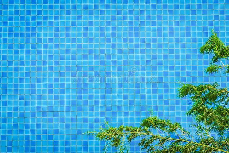 Top view swimming pool bottom caustics ripple and flow with wave. S background and tree foreground. Summer background. Texture of water surface stock image