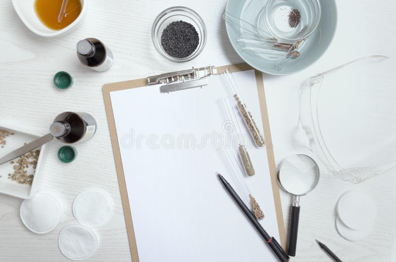 Top view of table at the agro laboratory.Working process of exploring seeds.Concept of working place of agro laboratory assistant royalty free stock photos