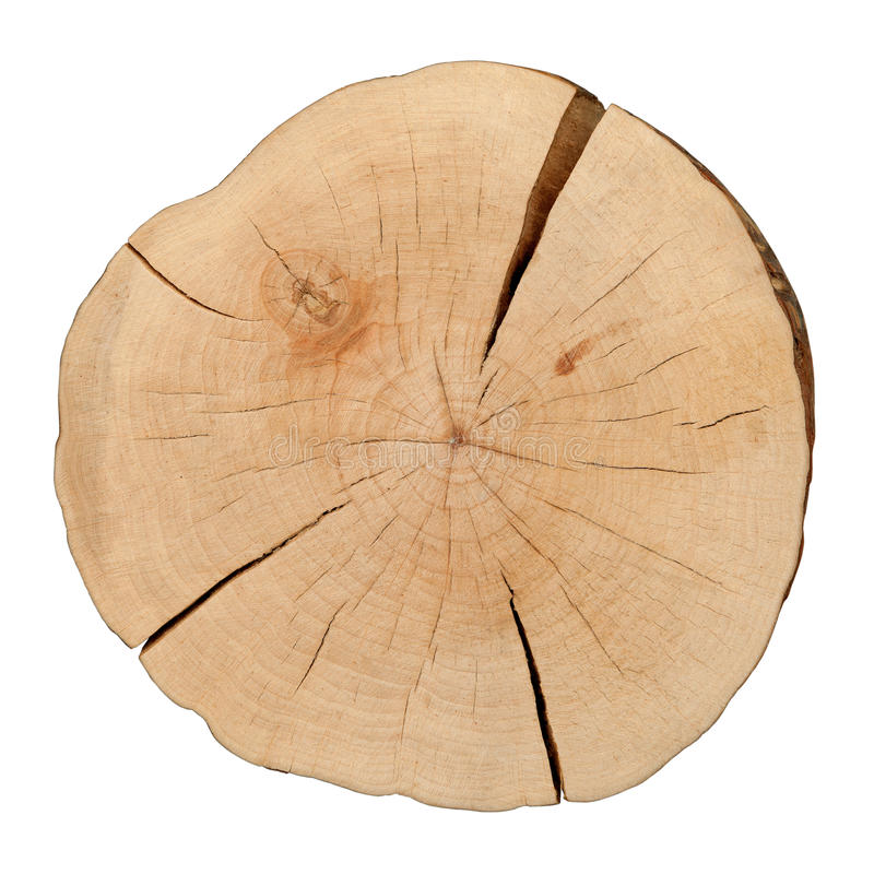 Top view of a tree stump royalty free stock photography