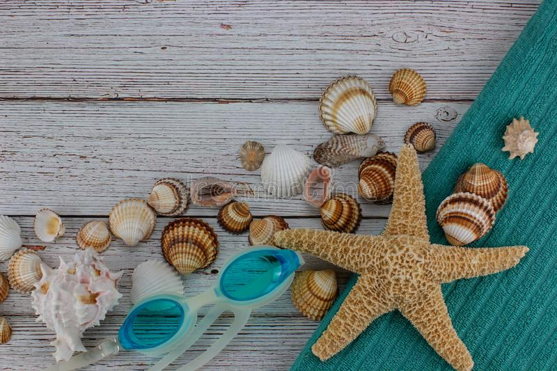 Flat lay with shells, beach accessories and glasses. stock photography