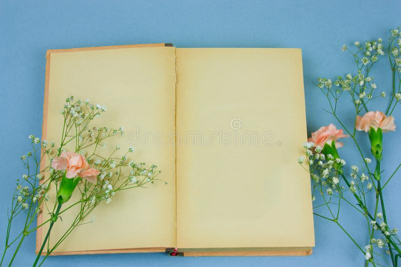 Vintage book with empty sheets and flowers on a pastel blue background. Top view vintage book with empty sheets and flowers on a pastel blue background royalty free stock images