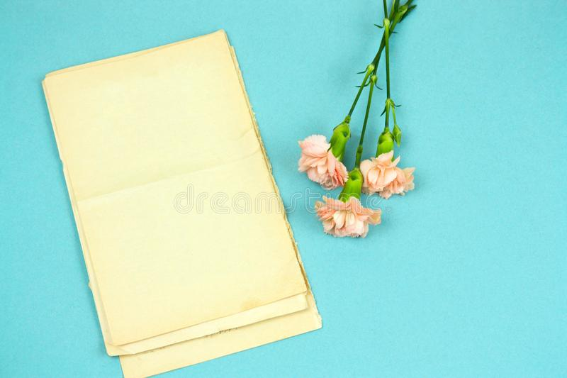 Vintage book with empty sheets and flowers on a pastel blue background. Top view vintage book with empty sheets and flowers on a pastel blue background stock photos