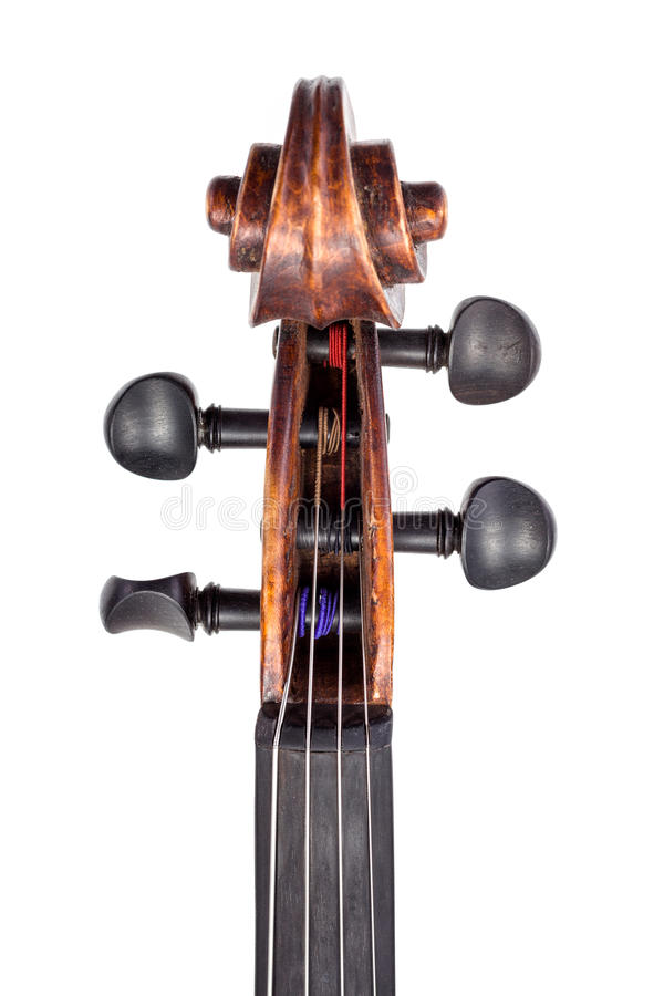 Top view of violin pegbox and pegs royalty free stock image