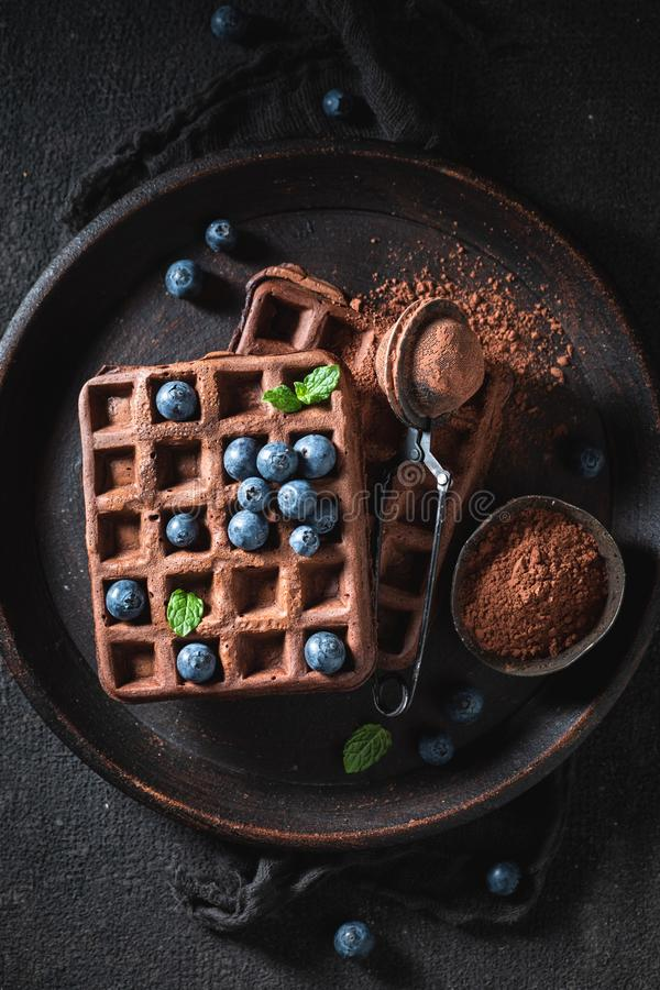Top view of waffles made of cocoa with fresh fruits stock photos