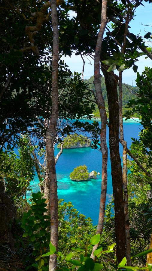 Top view from Wayag Islands, Raja Ampat, west Papua, Indonesia royalty free stock images